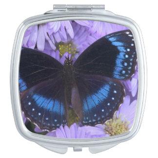 Sammamish Washington Photograph of Butterfly 20 Makeup Mirror