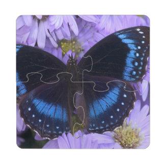 Sammamish Washington Photograph of Butterfly 20 Puzzle Coaster