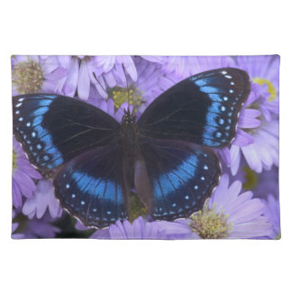 Sammamish Washington Photograph of Butterfly 20 Placemat