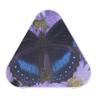 Sammamish Washington Photograph of Butterfly 20 Speaker