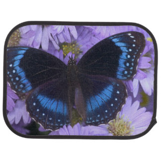 Sammamish Washington Photograph of Butterfly 20 Car Mat