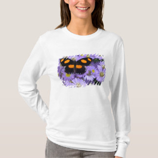Sammamish Washington Photograph of Butterfly 21 T-Shirt