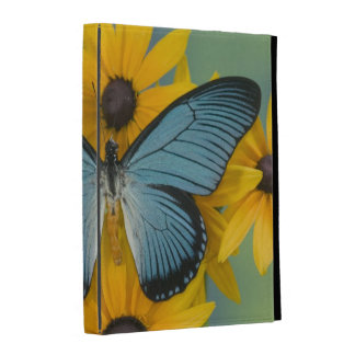 Sammamish Washington Photograph of Butterfly 22 iPad Case