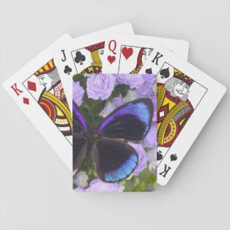 Sammamish Washington Photograph of Butterfly 2 Playing Cards