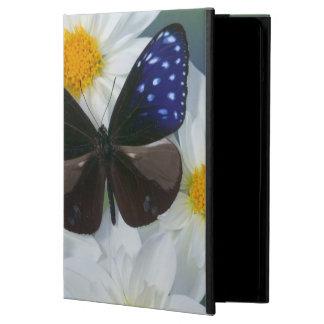 Sammamish Washington Photograph of Butterfly 33 iPad Air Cases