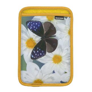 Sammamish Washington Photograph of Butterfly 33 iPad Mini Sleeves