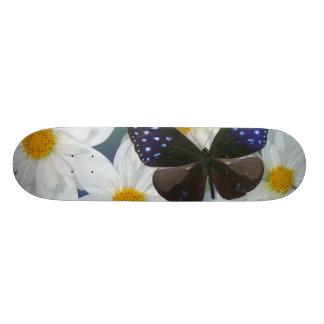 Sammamish Washington Photograph of Butterfly 33 Skateboard Deck