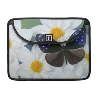 Sammamish Washington Photograph of Butterfly 33 Sleeve For MacBooks