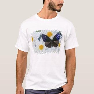 Sammamish Washington Photograph of Butterfly 33 T-Shirt
