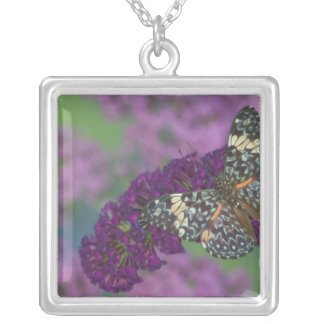 Sammamish Washington Photograph of Butterfly 35 Silver Plated Necklace