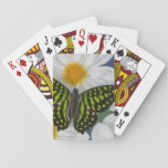 Sammamish Washington Photograph of Butterfly 36 Deck Of Cards