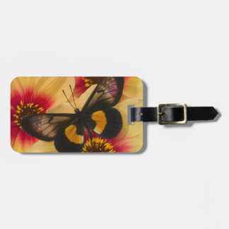 Sammamish Washington Photograph of Butterfly 39 Luggage Tag