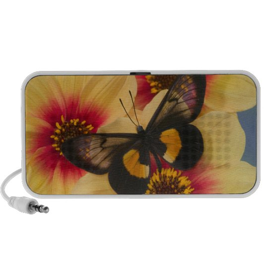Sammamish Washington Photograph of Butterfly 39 Portable Speaker