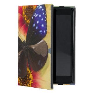 Sammamish Washington Photograph of Butterfly 40 Case For iPad Mini