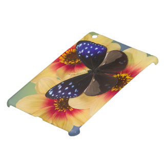 Sammamish Washington Photograph of Butterfly 40 iPad Mini Covers