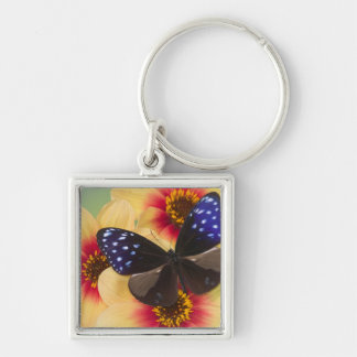 Sammamish Washington Photograph of Butterfly 40 Keychain