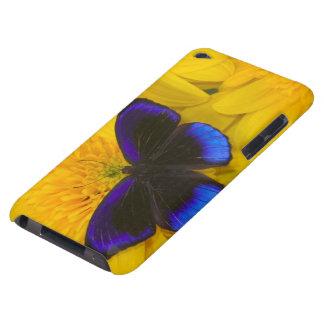 Sammamish Washington Photograph of Butterfly 41 iPod Case-Mate Case