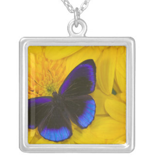 Sammamish Washington Photograph of Butterfly 41 Silver Plated Necklace