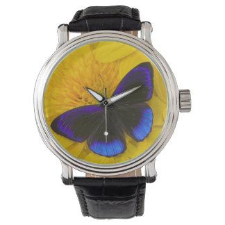 Sammamish Washington Photograph of Butterfly 41 Watch