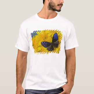 Sammamish Washington Photograph of Butterfly 42 T-Shirt