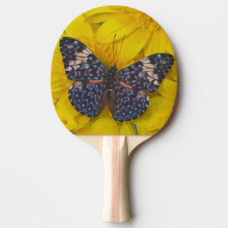 Sammamish Washington Photograph of Butterfly 43 Ping Pong Paddle