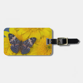 Sammamish Washington Photograph of Butterfly 43 Luggage Tag