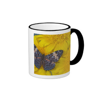 Sammamish Washington Photograph of Butterfly 43 Mugs