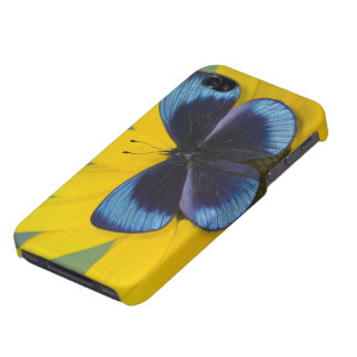Sammamish Washington Photograph of Butterfly 44 iPhone 4/4S Case