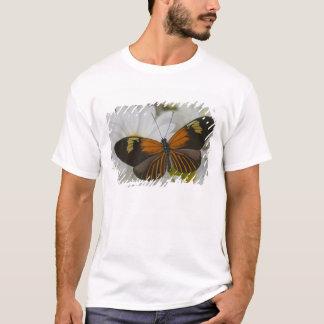 Sammamish Washington Photograph of Butterfly 50 T-Shirt