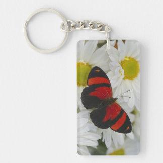 Sammamish Washington Photograph of Butterfly 51 Keychain