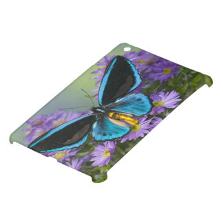 Sammamish Washington Photograph of Butterfly 52 Cover For The iPad Mini