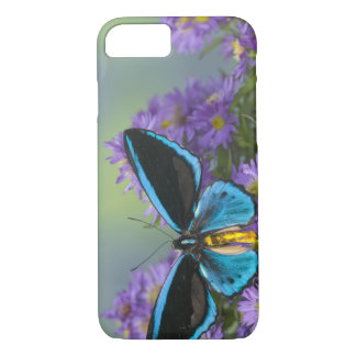 Sammamish Washington Photograph of Butterfly 52 iPhone 8/7 Case