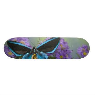 Sammamish Washington Photograph of Butterfly 52 Skateboard Deck