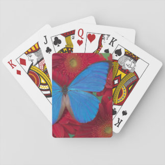 Sammamish Washington Photograph of Butterfly 56 Playing Cards