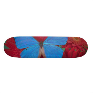 Sammamish Washington Photograph of Butterfly 56 Skateboard Deck