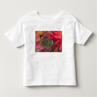 Sammamish Washington Photograph of Butterfly 58 Toddler T-shirt