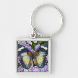 Sammamish Washington Photograph of Butterfly 5 Keychain
