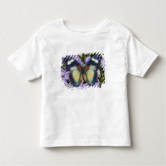 Sammamish Washington Photograph of Butterfly 5 Toddler T-shirt