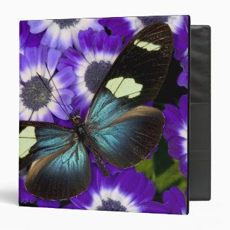 Sammamish Washington Photograph of Butterfly 6 3 Ring Binder