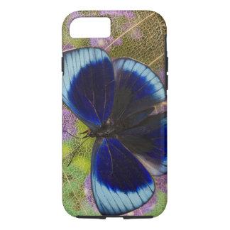 Sammamish Washington Photograph of Butterfly iPhone 7 Case
