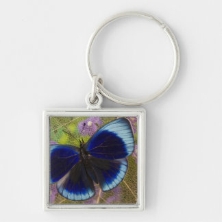 Sammamish Washington Photograph of Butterfly Keychain
