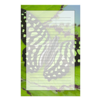 Sammamish Washington Photograph of Butterfly on 11 Stationery