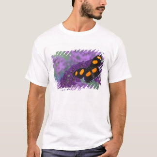 Sammamish Washington Photograph of Butterfly on 13 T-Shirt