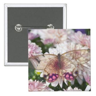Sammamish Washington Photograph of Butterfly on 15 Pinback Button