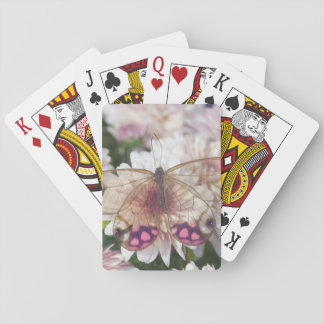 Sammamish Washington Photograph of Butterfly on 15 Playing Cards