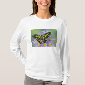 Sammamish Washington Photograph of Butterfly on 16 T-Shirt