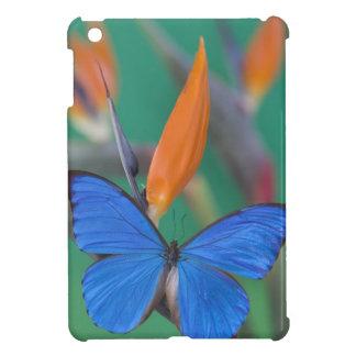 Sammamish Washington Photograph of Butterfly on 2 iPad Mini Cover