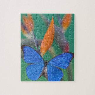 Sammamish Washington Photograph of Butterfly on 2 Jigsaw Puzzle