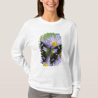 Sammamish Washington Photograph of Butterfly on 4 T-Shirt