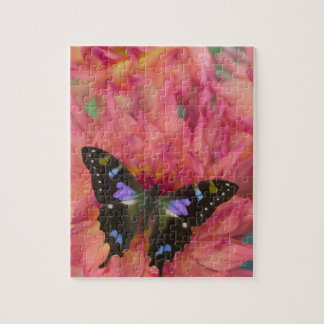 Sammamish Washington Photograph of Butterfly on 5 Jigsaw Puzzle